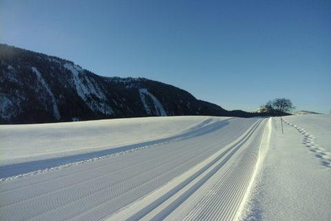 Nordic No Limit
